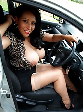 Danica Collins picks up a hitchhiker and flashes her tits and pussy