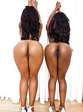 Sexy ebony girls jump on a fat dick and fuck and suck til dude cums watch ebony ass and tits bounce on cock