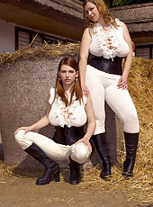 Stacked Sluts in A Stable