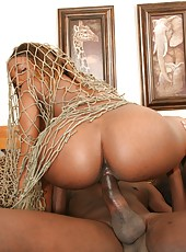 A dark skinned slut gets wrapped in a net and nailed here