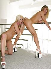 Gina Lynn Busty Lesbian Pics