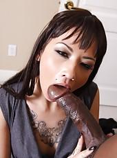 Sexy brunette Coco Velvet deepthroating huge black cock