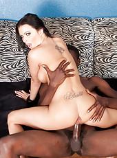 Sexy pornstar Bailey Brooks riding huge black dick