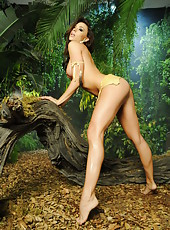 Astounding brunette babe Chanel Preston poses naked with her flawless body in the cryptic forest