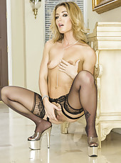 Astounding blonde milf Sheena Shaw demonstrates her hungry holes