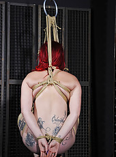 Paige Bound And Suspended In Air