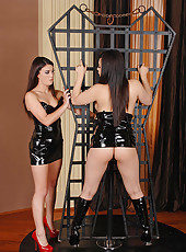 Dominatrix tortures the hot Tigerr!