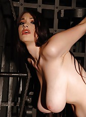 Busty beauty Anna Song restrained