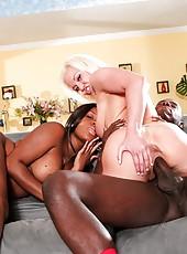 Big Tits Cumshots