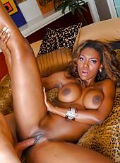 Big Tits Ass Fuck